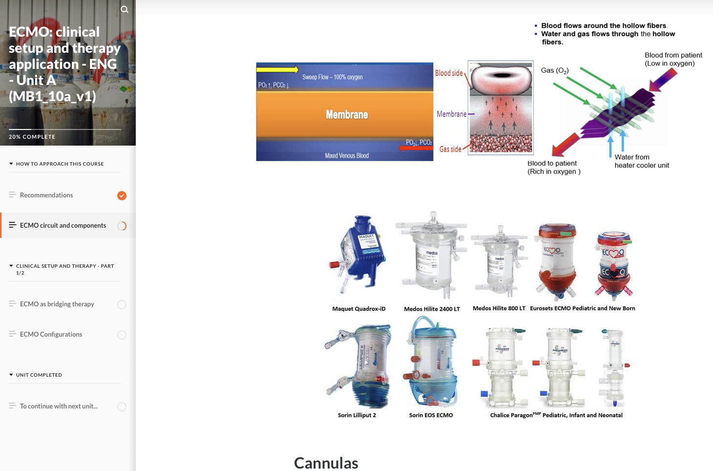 Lesson-Plan-Basics-1-6-CytoSorb-in-ECMO